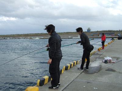 新潟東港1